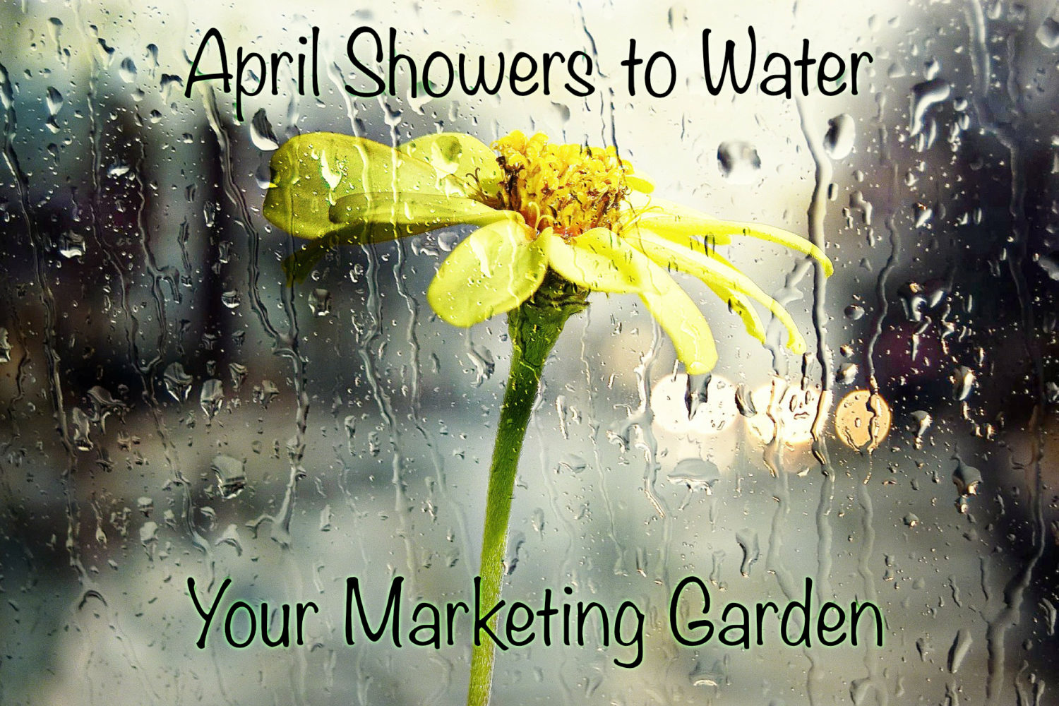 April Showers to Water Your Marketing Garden